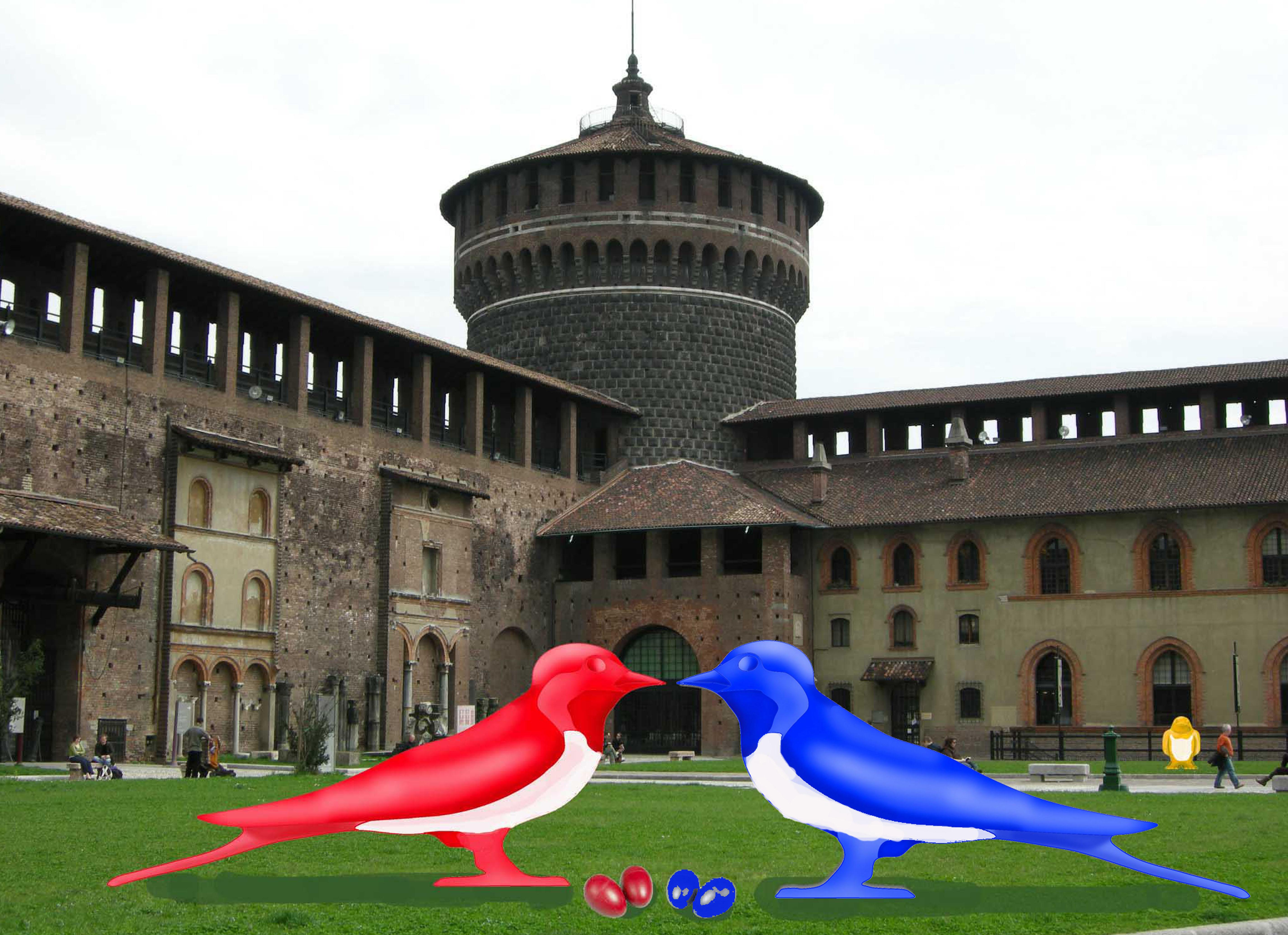 ATTENTI, AL CASTELLO SFORZESCO ARRIVANO LE RONDINI!