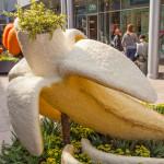 Natura e arte, al Portello per tutta la primavera