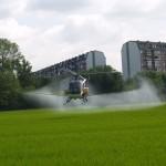 Comune di Milano: lotta dura contro le zanzare