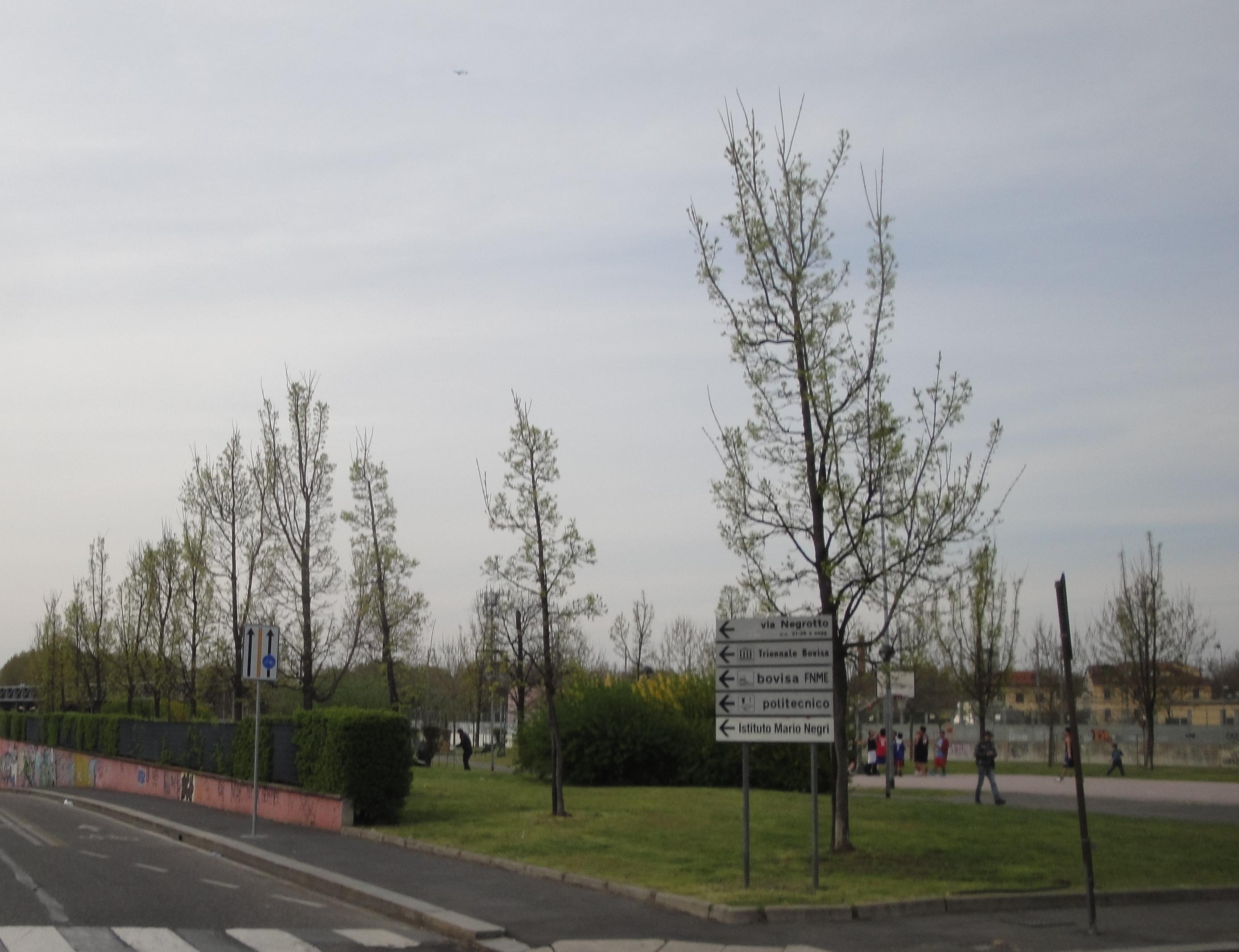 Anarchia al parco Giovanni Testori e dintorni