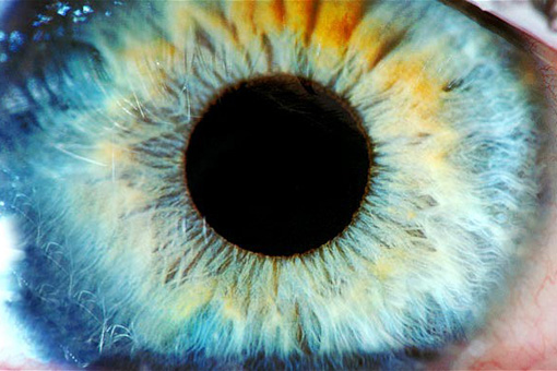 Nuove tecnologie e nuove terapie, ma non per tutti: la SOI e la difficile situazione dell'oculistica italiana