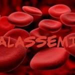"""Talassemia, assistenza a rischio """"estinzione""""?"""