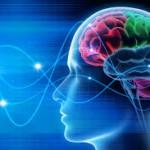 Scoperto un marcatore utile per lo sviluppo di terapie contro l'insorgenza dell'epilessia