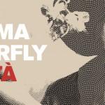"""ARRIVA """"MADAMA BUTTERFLY"""": FINO AL 14 DICEMBRE OLTRE 50 INIZIATIVE GRATUITE"""