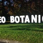 MUSEO BOTANICO: UN SABATO ALLA SCOPERTA DEL VERDE