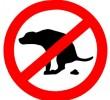 MILANO: SOLO 10 MULTE AI MALEDUCATI POSSESSORI DI CANI