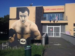 Il murale del CAM Sandro Lopopolo di via Lessona