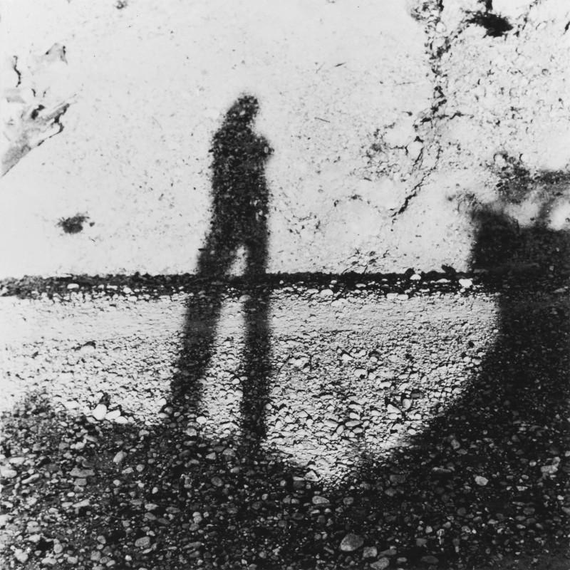 Ritratto dell'artista come ombra sul muro, 1957-1975